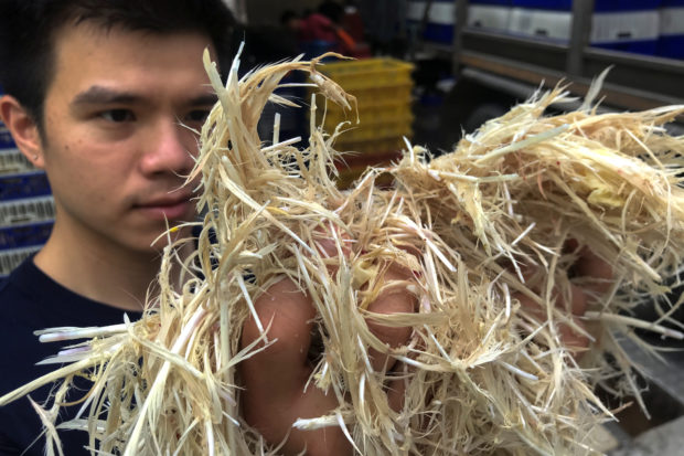 Thai researcher wonders if chicken feathers on the menu might fly