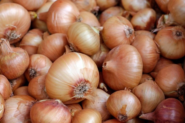 India lifts ban on onion exports as prices plunge